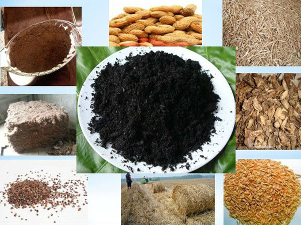 carbonization of biomass
