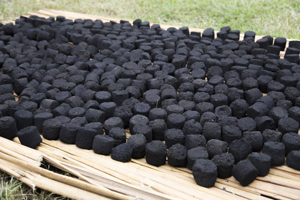 the potential of coconut bagasse in Renewable energy potential downloads and links the government of mozambique and funae conducted a study on solar, hydro, biomass, wind, geothermal, and maritime resources in the country between 2011 and 2013.